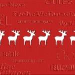 Weihnachtskarte-2015-K-4345